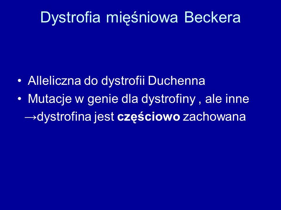 Dystrofia mięśniowa Beckera Alleliczna do dystrofii Duchenna Mutacje w genie dla dystrofiny, ale inne →dystrofina jest częściowo zachowana