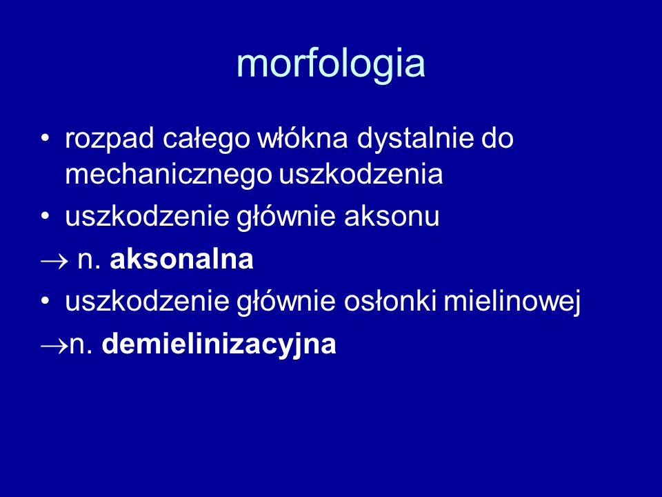 morfologia rozpad całego włókna dystalnie do mechanicznego uszkodzenia uszkodzenie głównie aksonu  n. aksonalna uszkodzenie głównie osłonki mielinowe