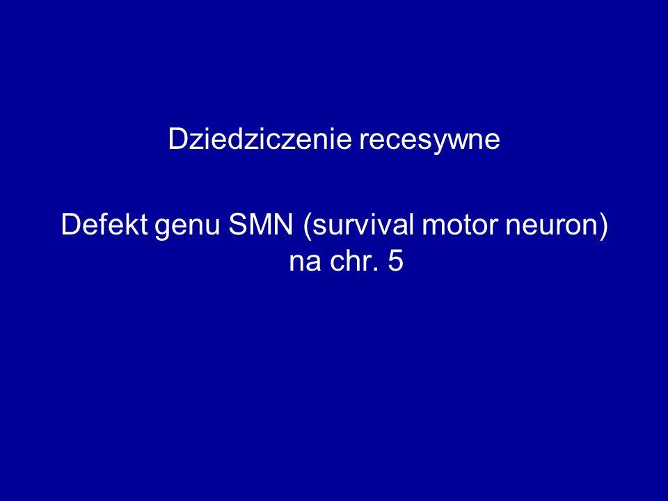 Dziedziczenie recesywne Defekt genu SMN (survival motor neuron) na chr. 5