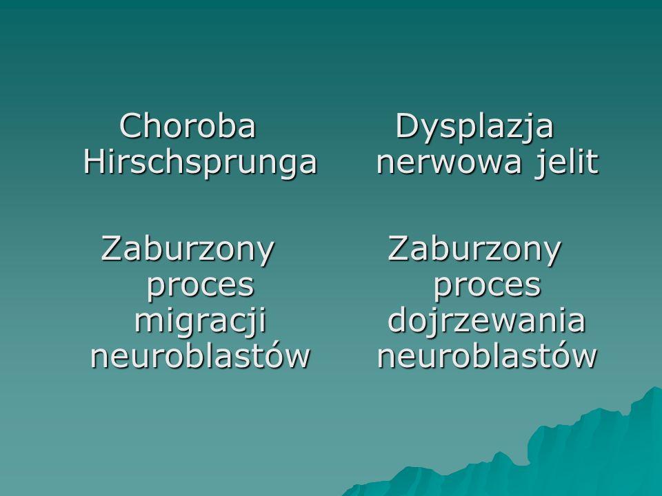 Choroba Hirschsprunga Zaburzony proces migracji neuroblastów Dysplazja nerwowa jelit Zaburzony proces dojrzewania neuroblastów