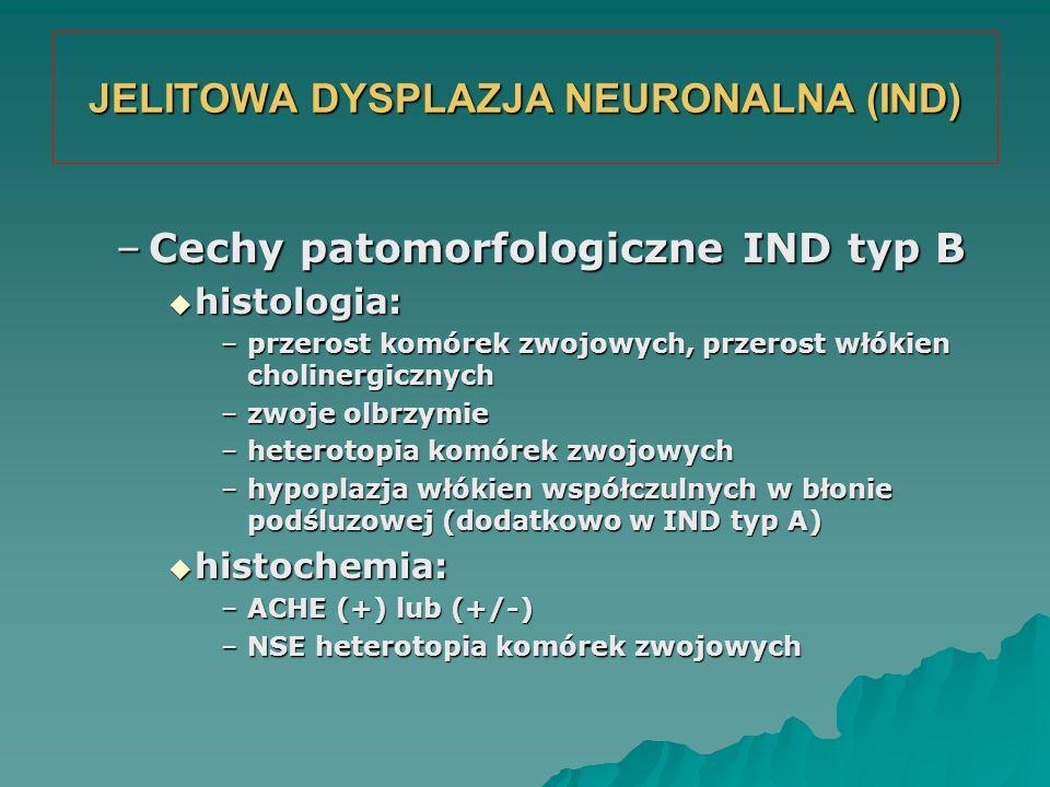 JELITOWA DYSPLAZJA NEURONALNA (IND) –Cechy patomorfologiczne IND typ B  histologia: –przerost komórek zwojowych, przerost włókien cholinergicznych –z