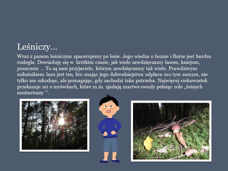 Leśniczy… Wraz z panem leśniczym spacerujemy po lesie. Jego wiedza o faunie i florze jest bardzo rozległa. Dowiaduję się w krótkim czasie, jak wiele z