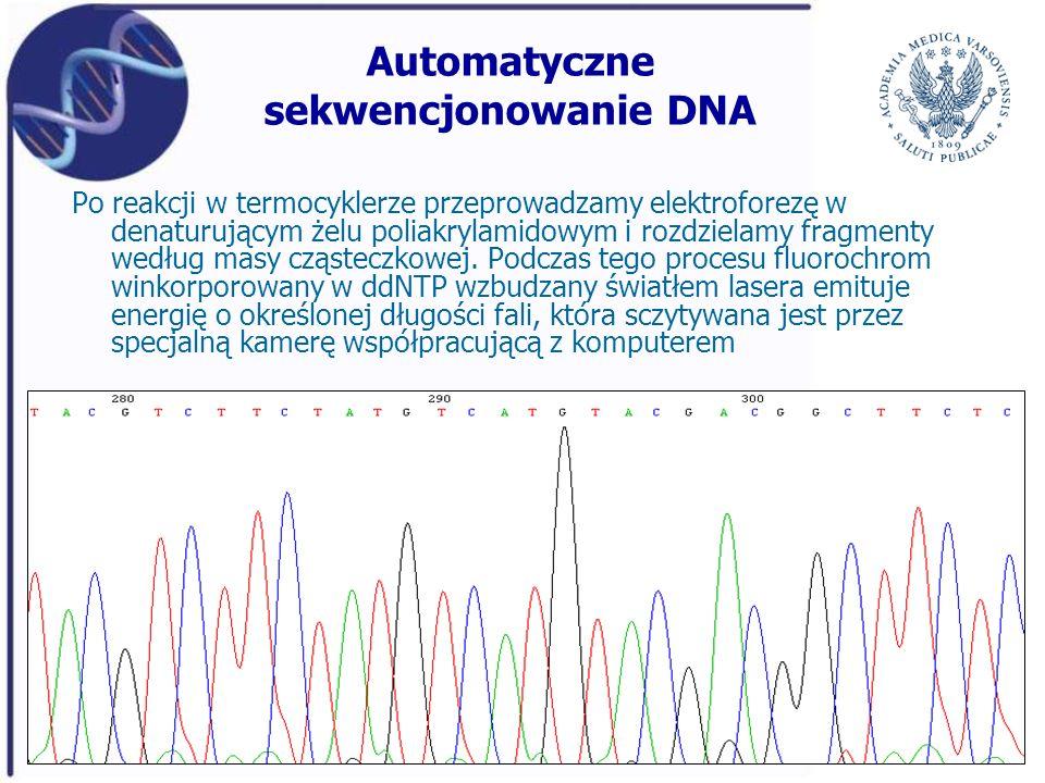 Automatyczne sekwencjonowanie DNA Po reakcji w termocyklerze przeprowadzamy elektroforezę w denaturującym żelu poliakrylamidowym i rozdzielamy fragmen