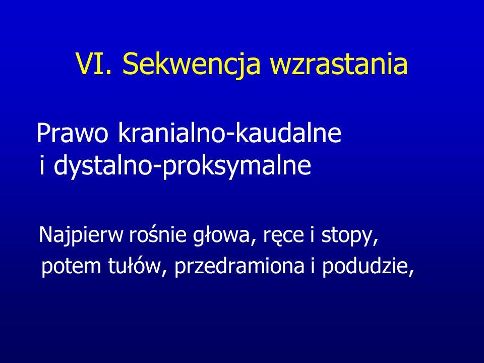 VI. Sekwencja wzrastania Prawo kranialno-kaudalne i dystalno-proksymalne Najpierw rośnie głowa, ręce i stopy, potem tułów, przedramiona i podudzie,
