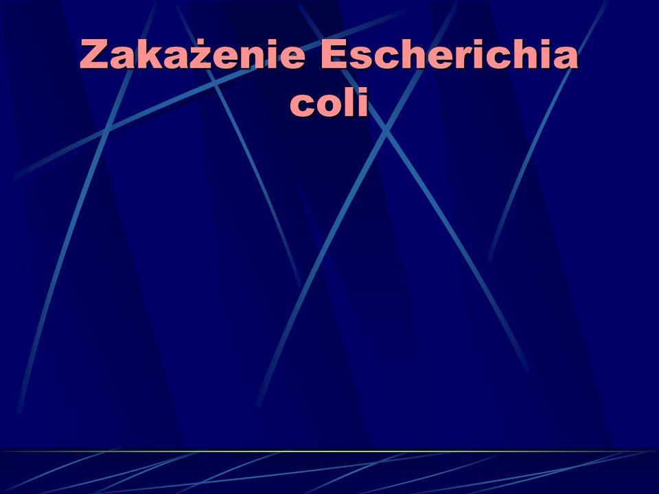 Zakażenie Escherichia coli