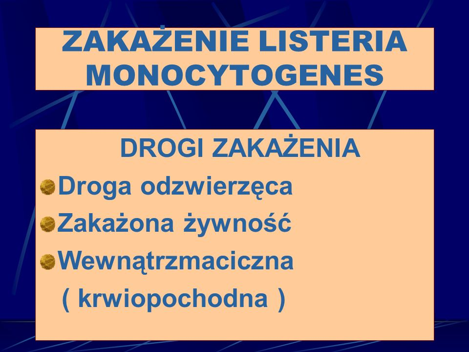 DROGI ZAKAŻENIA Droga odzwierzęca Zakażona żywność Wewnątrzmaciczna ( krwiopochodna ) ZAKAŻENIE LISTERIA MONOCYTOGENES