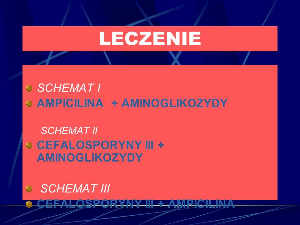 LECZENIE SCHEMAT I AMPICILINA + AMINOGLIKOZYDY SCHEMAT II CEFALOSPORYNY III + AMINOGLIKOZYDY SCHEMAT III CEFALOSPORYNY III + AMPICILINA