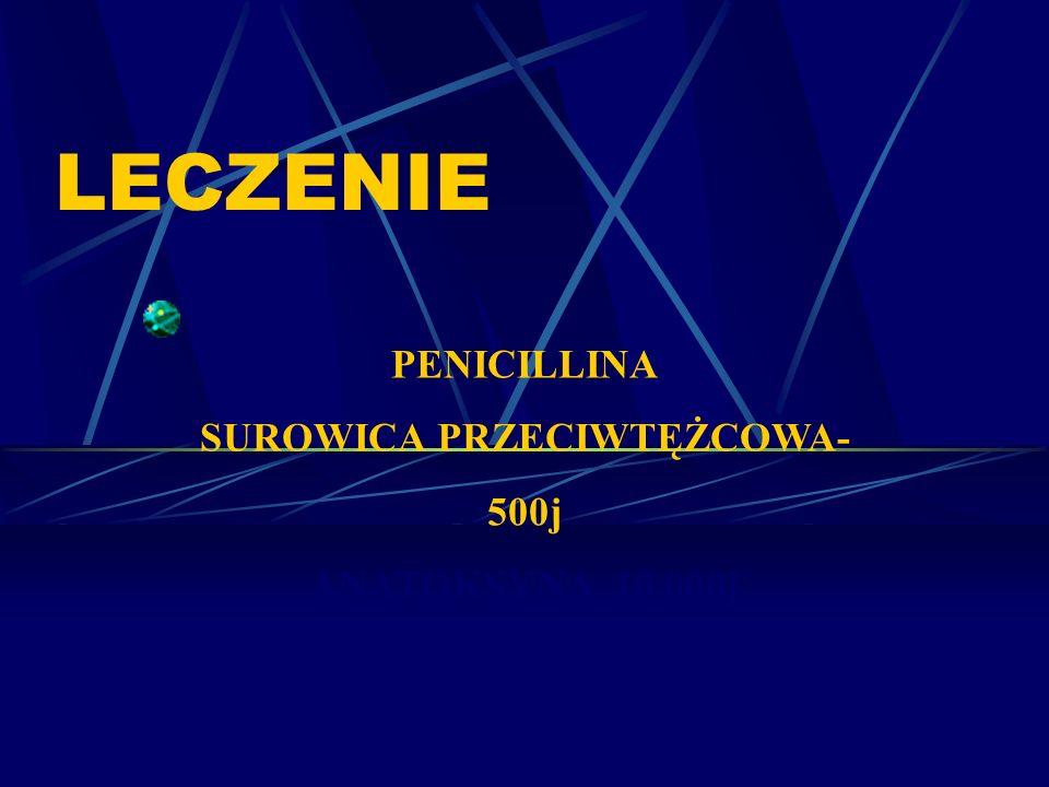 LECZENIE PENICILLINA SUROWICA PRZECIWTĘŻCOWA- 500j ANATOKSYNA 10 000j