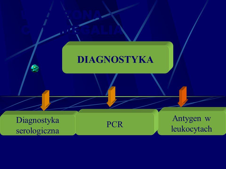 WRODZONA CYTOMEGALIA Diagnostyka serologiczna Antygen w leukocytach DIAGNOSTYKA PCR