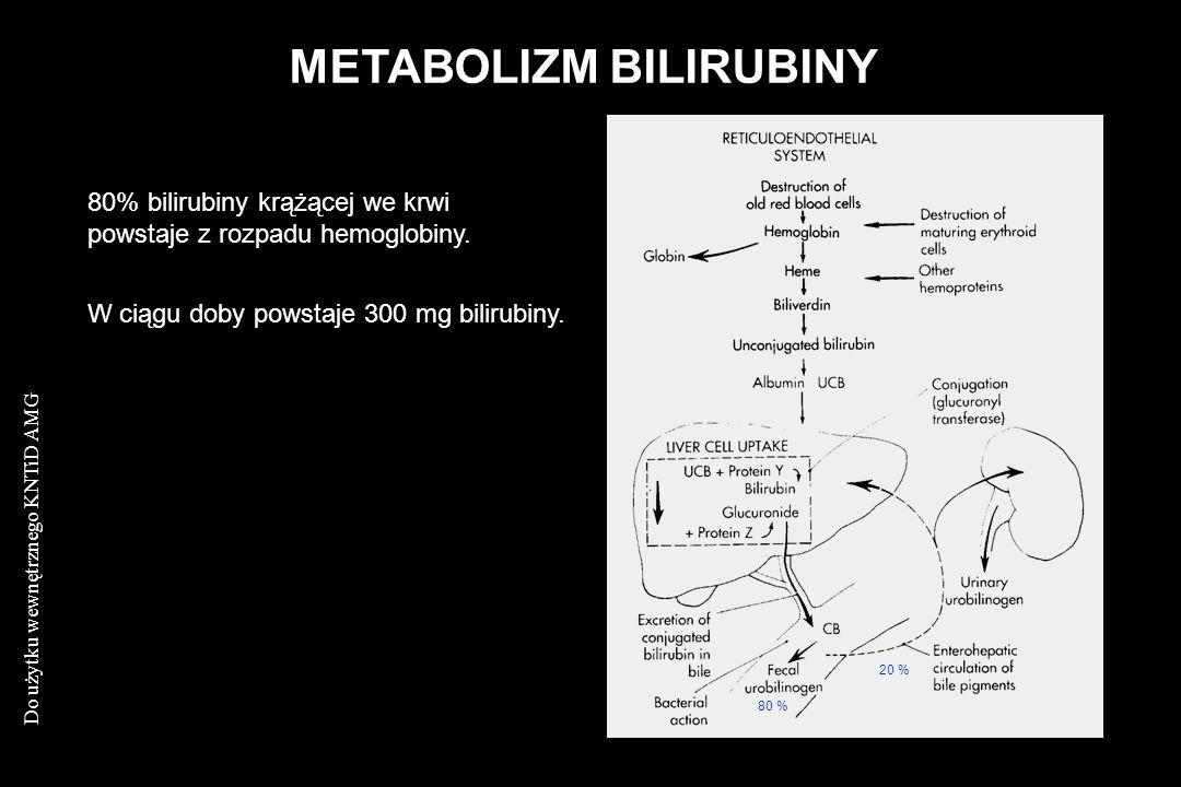 Do użytku wewnętrznego KNTiD AMG METABOLIZM BILIRUBINY 80% bilirubiny krążącej we krwi powstaje z rozpadu hemoglobiny. W ciągu doby powstaje 300 mg bi