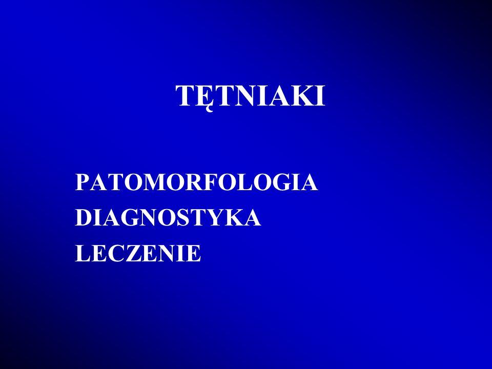 TĘTNIAKI PATOMORFOLOGIA DIAGNOSTYKA LECZENIE