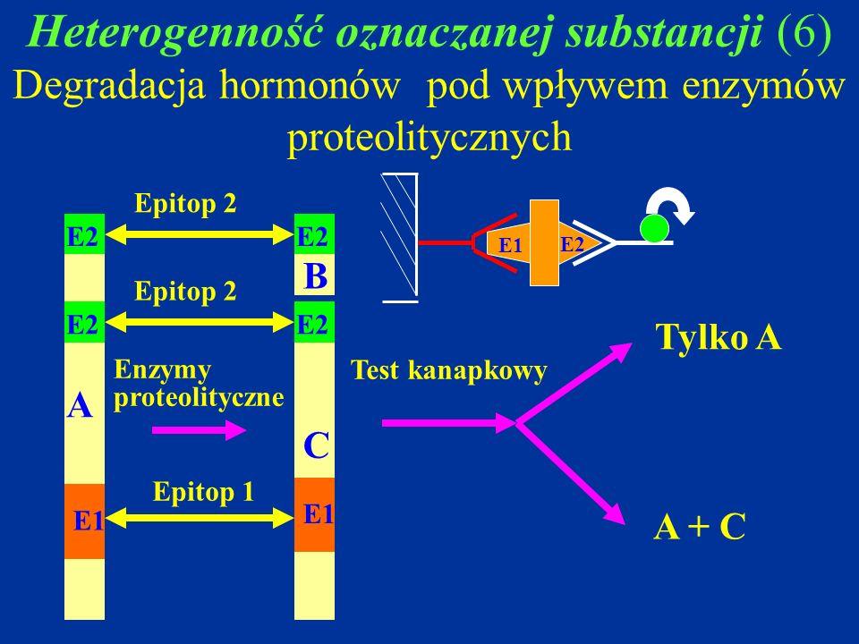 Heterogenność oznaczanej substancji (6) Degradacja hormonów pod wpływem enzymów proteolitycznych Enzymy proteolityczne Test kanapkowy A C B Epitop 1 E