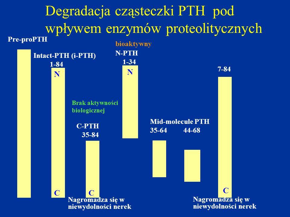 Degradacja cząsteczki PTH pod wpływem enzymów proteolitycznych Pre-proPTH Intact-PTH (i-PTH) 1-84 N C C-PTH 35-84 C N N-PTH 1-34 Mid-molecule PTH 35-6