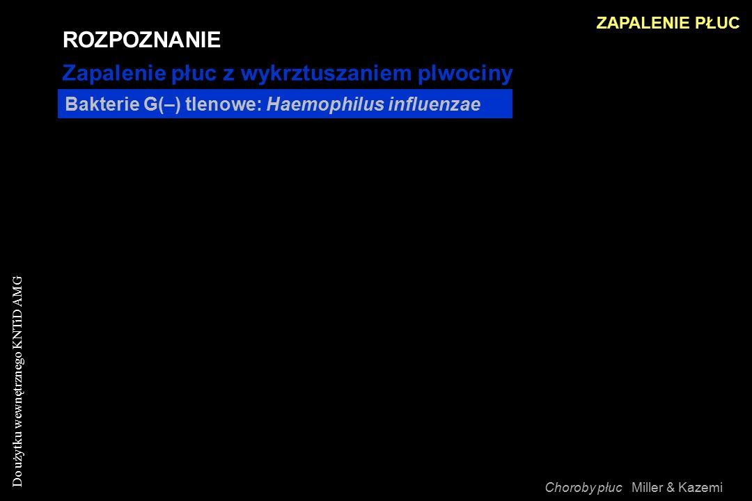 Do użytku wewnętrznego KNTiD AMG Bakterie G(–) tlenowe: Haemophilus influenzae ROZPOZNANIE Zapalenie płuc z wykrztuszaniem plwociny ZAPALENIE PŁUC Choroby płuc Miller & Kazemi