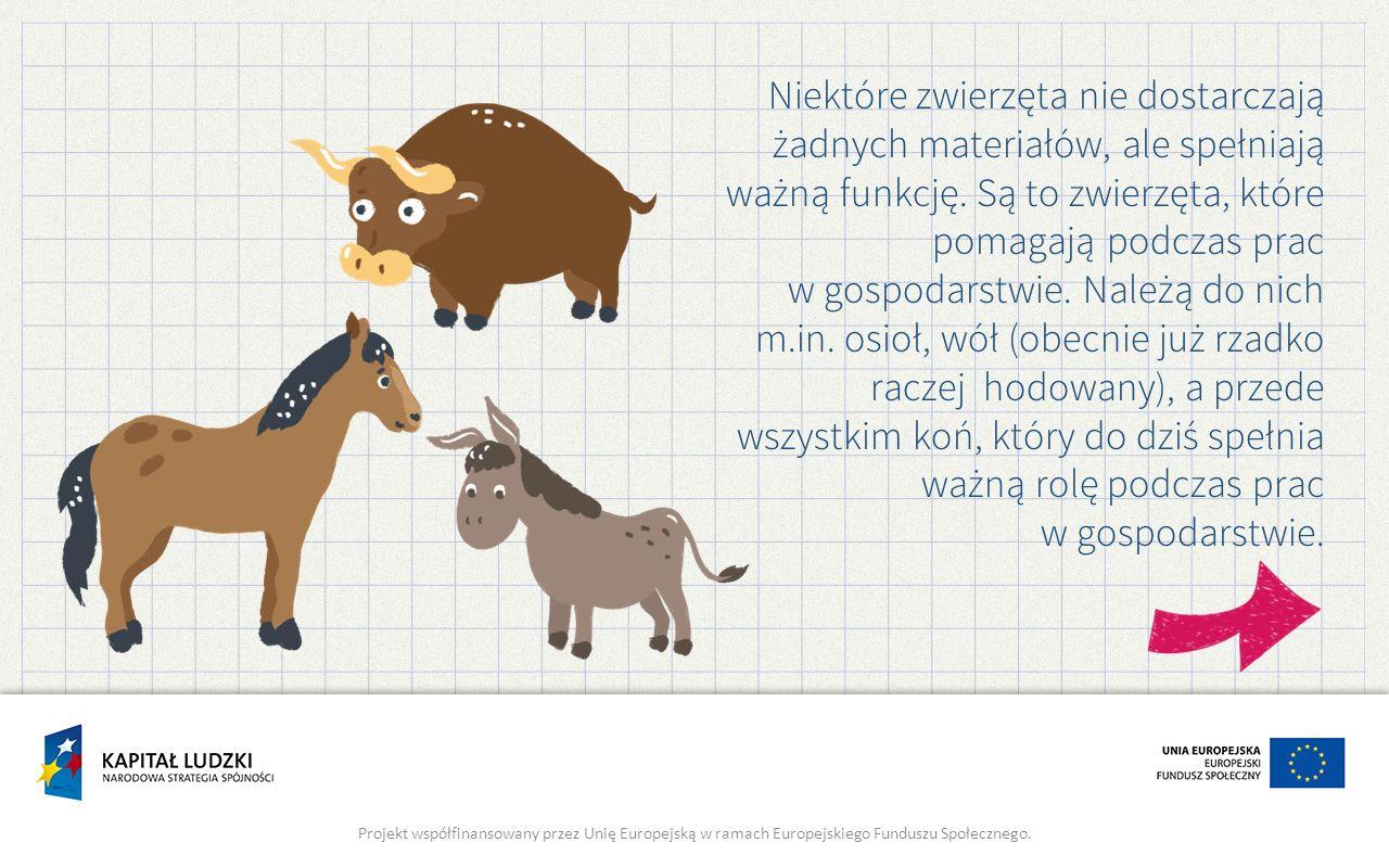 Niektóre zwierzęta nie dostarczają żadnych materiałów, ale spełniają ważną funkcję. Są to zwierzęta, które pomagają podczas prac w gospodarstwie. Nale
