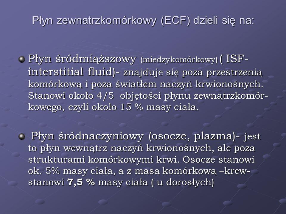Płyn zewnatrzkomórkowy (ECF) dzieli się na: Płyn śródmiąższowy (miedzykomórkowy) ( ISF- interstitial fluid)- znajduje się poza przestrzenią komórkową