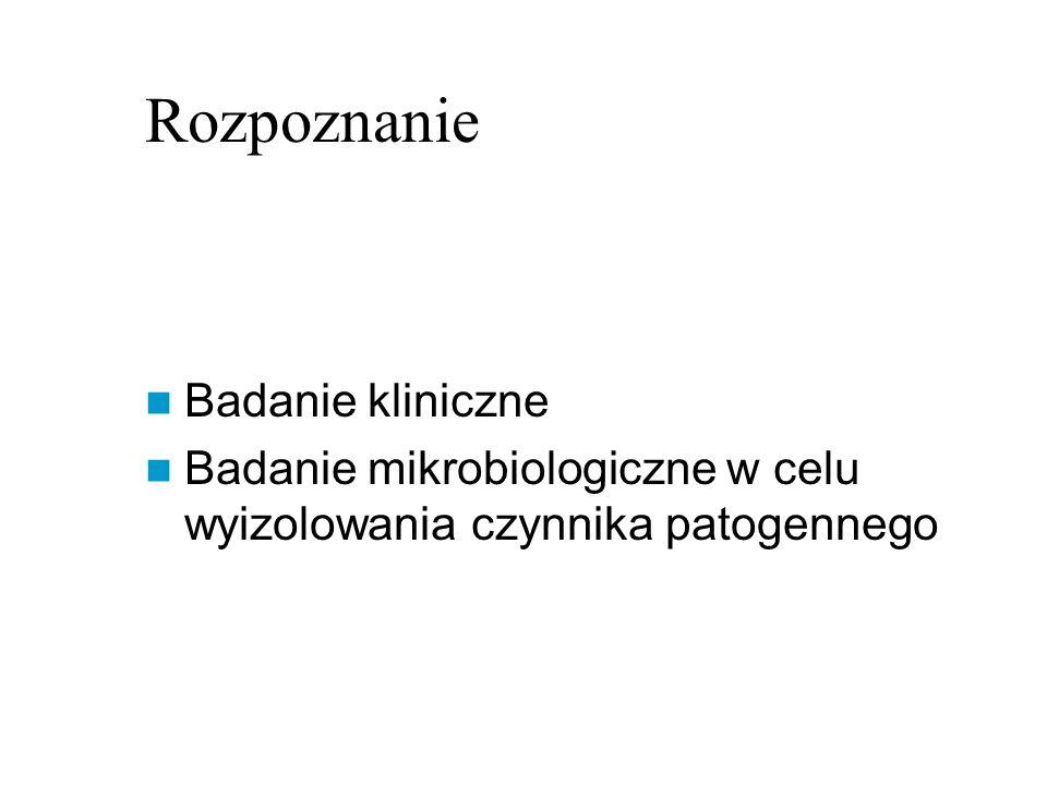 Rozpoznanie Badanie kliniczne Badanie mikrobiologiczne w celu wyizolowania czynnika patogennego