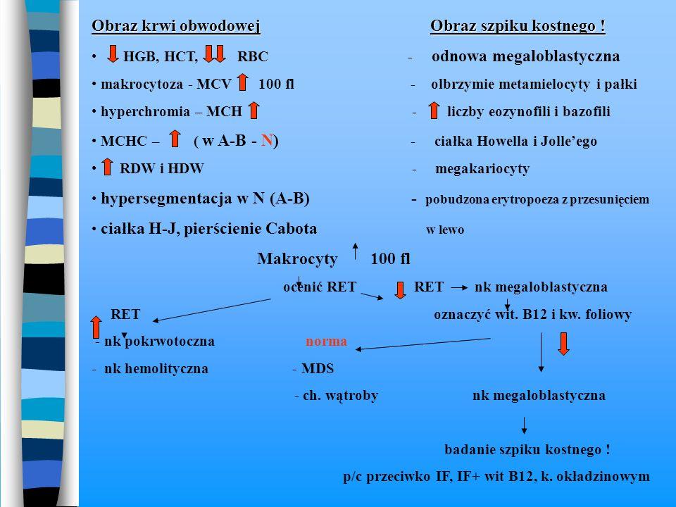Obraz krwi obwodowej Obraz szpiku kostnego ! HGB, HCT, RBC - odnowa megaloblastyczna makrocytoza - MCV 100 fl - olbrzymie metamielocyty i pałki hyperc