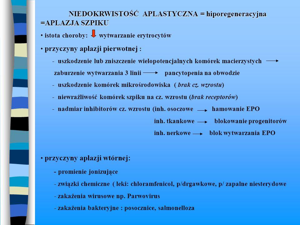 NIEDOKRWISTOŚĆ APLASTYCZNA = hiporegeneracyjna =APLAZJA SZPIKU NIEDOKRWISTOŚĆ APLASTYCZNA = hiporegeneracyjna =APLAZJA SZPIKU istota choroby: wytwarza