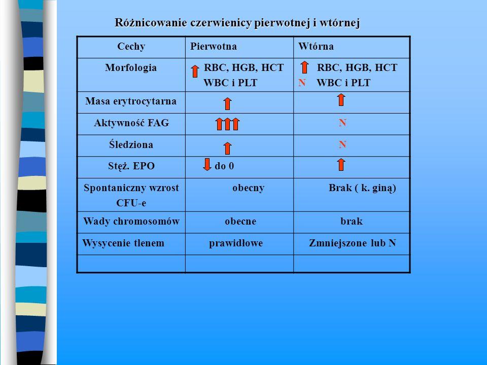 Różnicowanie czerwienicy pierwotnej i wtórnej Różnicowanie czerwienicy pierwotnej i wtórnej CechyPierwotnaWtórna Morfologia RBC, HGB, HCT WBC i PLT RB
