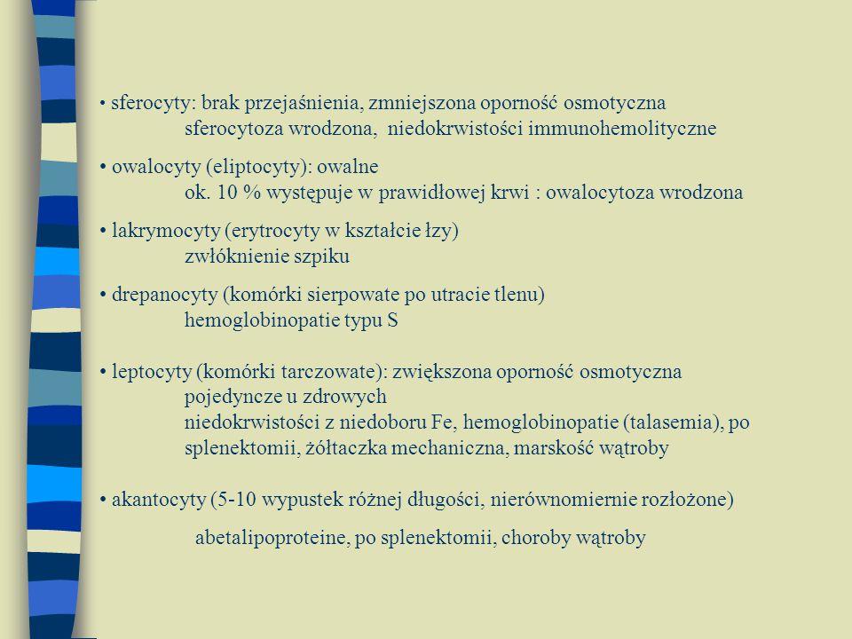sferocyty: brak przejaśnienia, zmniejszona oporność osmotyczna sferocytoza wrodzona, niedokrwistości immunohemolityczne owalocyty (eliptocyty): owalne
