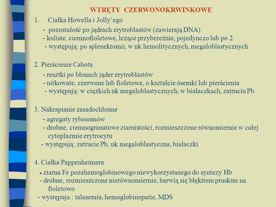 WTRĘTY CZERWONOKRWINKOWE 1.Ciałka Howella i Jolly'ego - pozostałość po jądrach erytroblastów (zawierają DNA) - kuliste, ciemnofioletowe, leżące przybr
