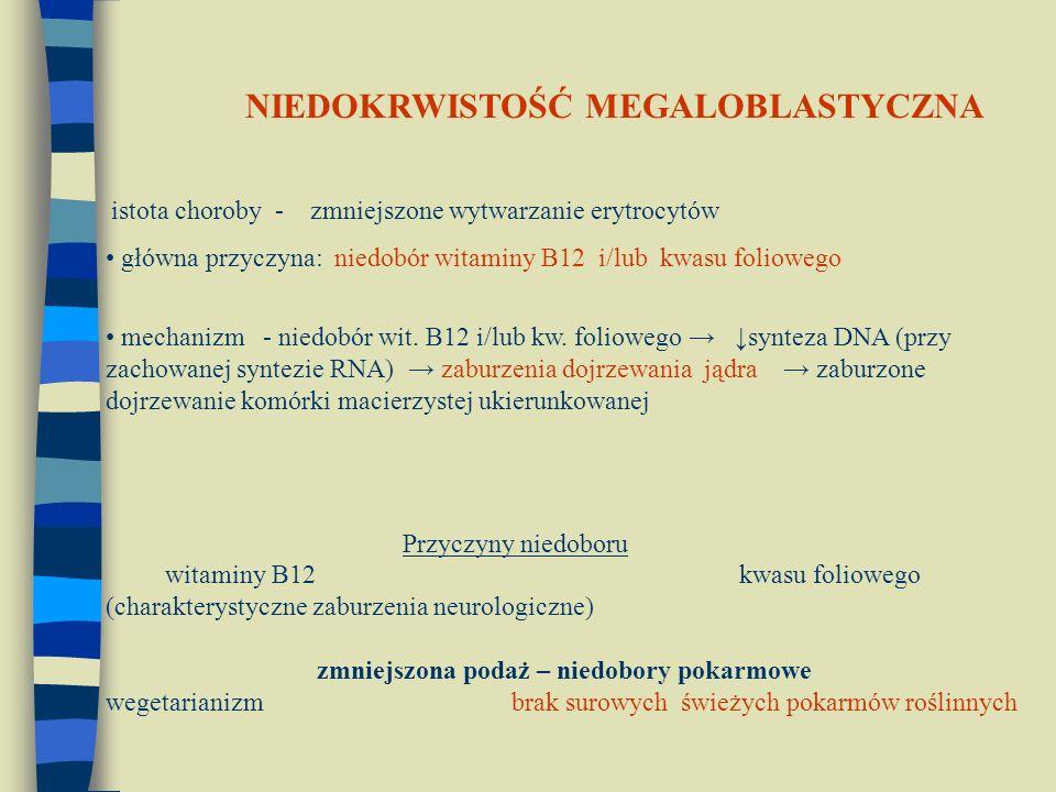 istota choroby - zmniejszone wytwarzanie erytrocytów główna przyczyna: niedobór witaminy B12 i/lub kwasu foliowego mechanizm - niedobór wit. B12 i/lub