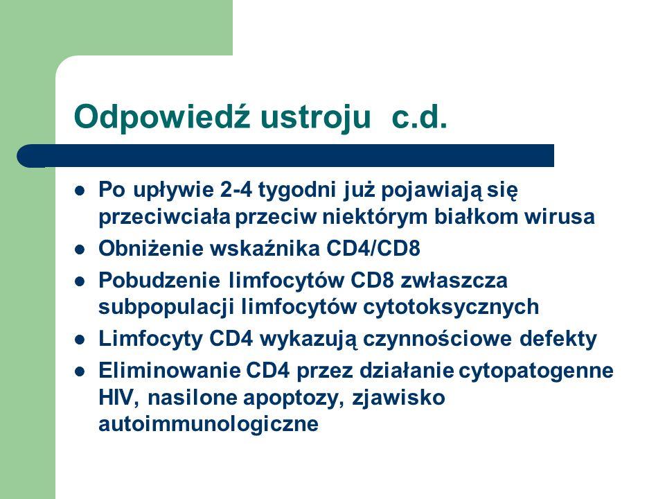 Odpowiedź ustroju c.d. Po upływie 2-4 tygodni już pojawiają się przeciwciała przeciw niektórym białkom wirusa Obniżenie wskaźnika CD4/CD8 Pobudzenie l