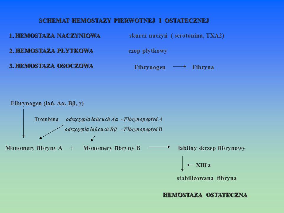 Fibrynogen (łań. Aα, Bβ, γ) Trombina odszczepia łańcuch Aα - Fibrynopeptyd A odszczepia łańcuch Bβ - Fibrynopeptyd B Monomery fibryny A + Monomery fib
