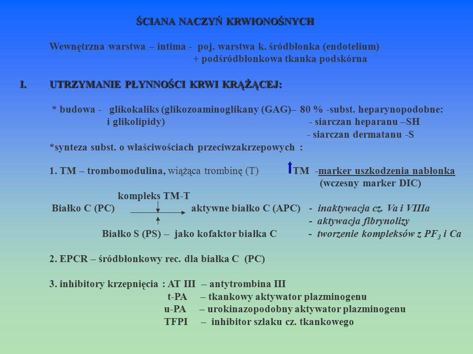 ŚCIANA NACZYŃ KRWIONOŚNYCH Wewnętrzna warstwa – intima - poj. warstwa k. śródbłonka (endotelium) + podśródbłonkowa tkanka podskórna I.UTRZYMANIE PŁYNN