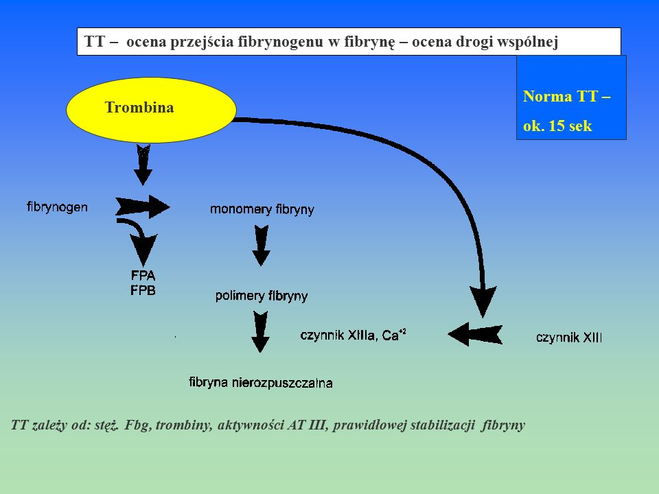 TT – ocena przejścia fibrynogenu w fibrynę – ocena drogi wspólnej Norma TT – ok. 15 sek Trombina TT zależy od: stęż. Fbg, trombiny, aktywności AT III,