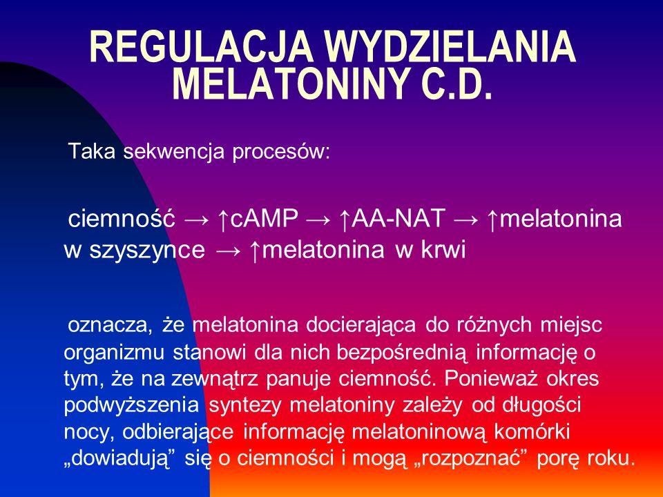 REGULACJA WYDZIELANIA MELATONINY C.D. Taka sekwencja procesów: ciemność → ↑cAMP → ↑AA-NAT → ↑melatonina w szyszynce → ↑melatonina w krwi oznacza, że m