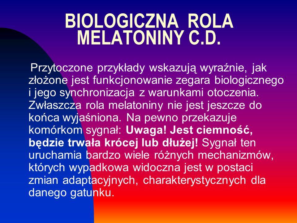 BIOLOGICZNA ROLA MELATONINY C.D. Przytoczone przykłady wskazują wyraźnie, jak złożone jest funkcjonowanie zegara biologicznego i jego synchronizacja z