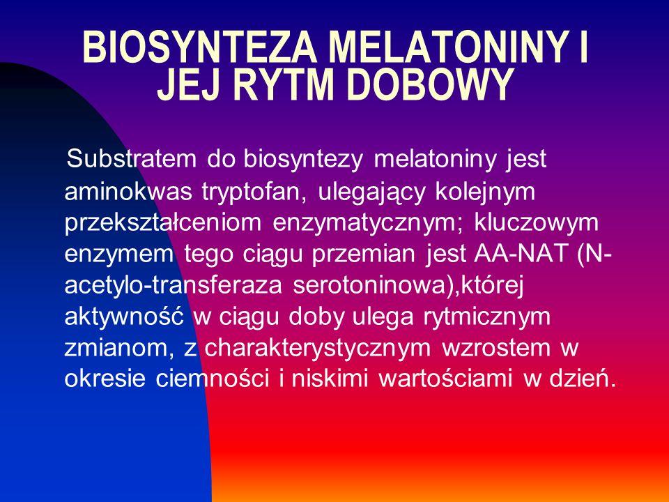 BIOSYNTEZA MELATONINY I JEJ RYTM DOBOWY Substratem do biosyntezy melatoniny jest aminokwas tryptofan, ulegający kolejnym przekształceniom enzymatyczny