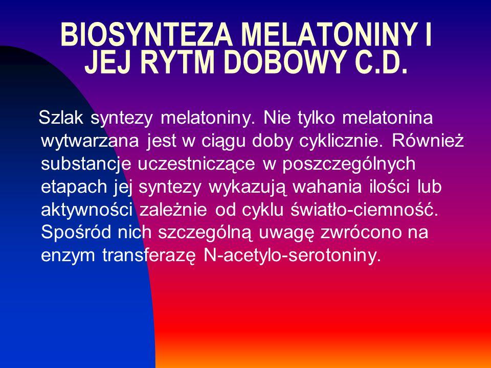 Szlak syntezy melatoniny. Nie tylko melatonina wytwarzana jest w ciągu doby cyklicznie. Również substancje uczestniczące w poszczególnych etapach jej