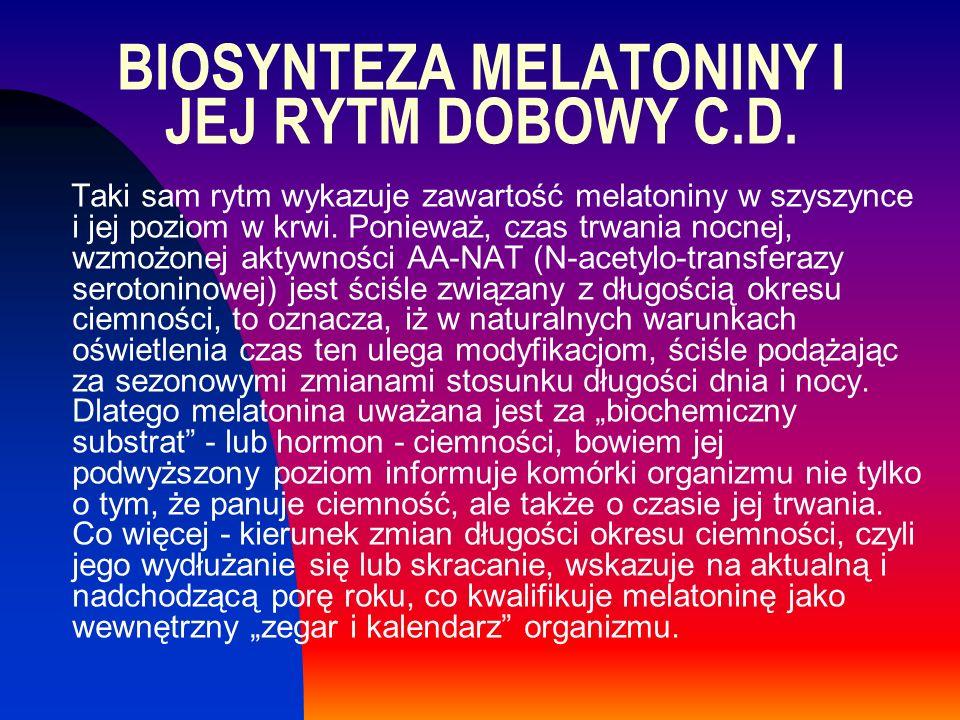 Taki sam rytm wykazuje zawartość melatoniny w szyszynce i jej poziom w krwi. Ponieważ, czas trwania nocnej, wzmożonej aktywności AA-NAT (N-acetylo-tra