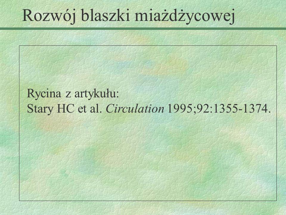Rycina z artykułu: Stary HC et al. Circulation 1995;92:1355-1374. Rozwój blaszki miażdżycowej