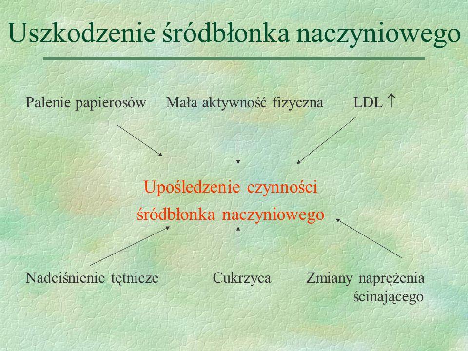 Powstawanie zmian miażdżycowych §Gromadzenie się lipidów w ścianie naczyniowej §Rekrutacja leukocytów monocyty -> makrofagi -> komórki piankowate mediatory zapalenia (makrofagi, limfocyty T) §Migracja i proliferacja mięśni gładkich §Wytwarzanie macierzy pozakomórkowej §Mineralizacja blaszek miażdżycowych