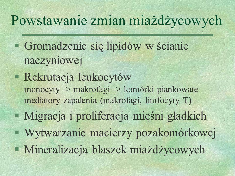 Czynniki zakaźne §Chlamydia pneumoniae, Helicobacter pylori, Herpesvirus, CMV §Obecność czynnika zakaźnego w zmianach miażdżycowych, podwyższone miana przeciwciał we krwi, dane eksperymentalne (króliki z hipercholesterolemią: donosowe zakażenie Chlamydia pneumoniae miażdżyca , azytromycyna miażdżyca  ) §?Mechanizm: mediatory zapalenia, proliferacja SMC, leukocytów, dysfunkcja śródbłonka, autoprzeciwciała dla HSP §Chlamydia pneumoniae IgG 50% ludzi > 20 r.ż., marker palenia papierosów.