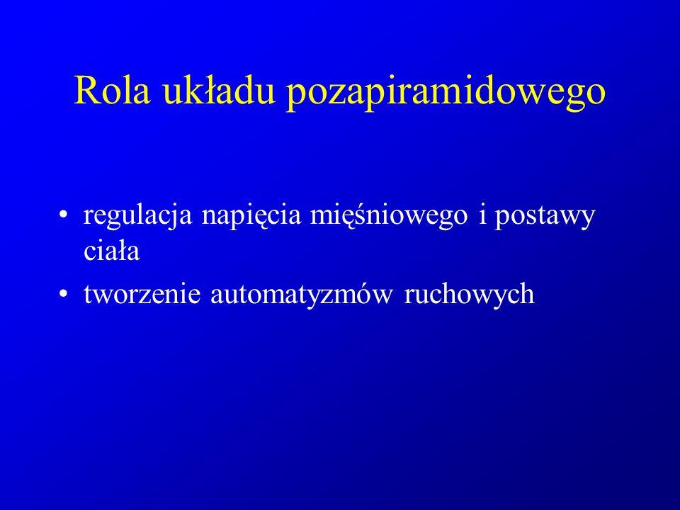 Objawy uszkodzenia układu pozapiramidowego Zaburzenia hipokinetyczne - spowolnienie ruchowe - sztywność mięśni Zaburzenia hiperkinetyczne (ruchy mimowolne) - drżenie - dystonia - tiki - pląsawica - mioklonie - atetoza