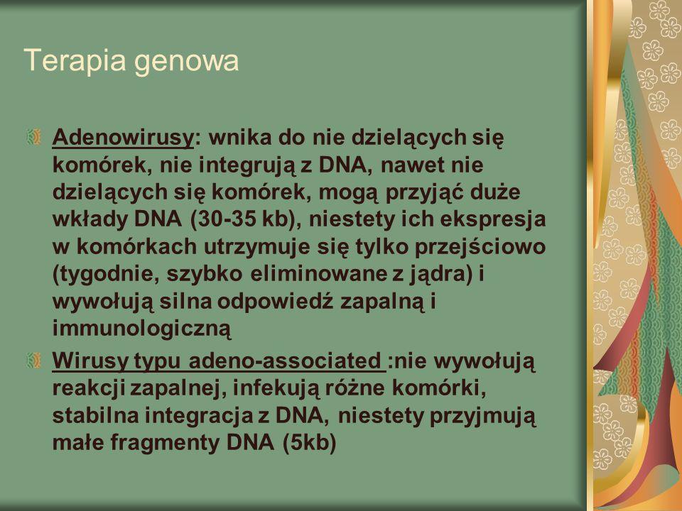 Terapia genowa Adenowirusy: wnika do nie dzielących się komórek, nie integrują z DNA, nawet nie dzielących się komórek, mogą przyjąć duże wkłady DNA (30-35 kb), niestety ich ekspresja w komórkach utrzymuje się tylko przejściowo (tygodnie, szybko eliminowane z jądra) i wywołują silna odpowiedź zapalną i immunologiczną Wirusy typu adeno-associated :nie wywołują reakcji zapalnej, infekują różne komórki, stabilna integracja z DNA, niestety przyjmują małe fragmenty DNA (5kb)