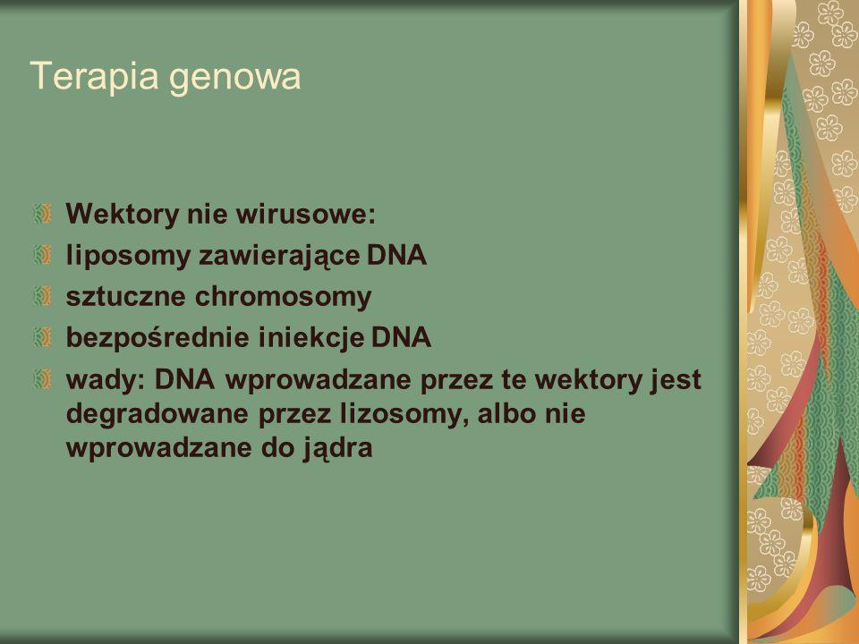 Terapia genowa Wektory nie wirusowe: liposomy zawierające DNA sztuczne chromosomy bezpośrednie iniekcje DNA wady: DNA wprowadzane przez te wektory jest degradowane przez lizosomy, albo nie wprowadzane do jądra