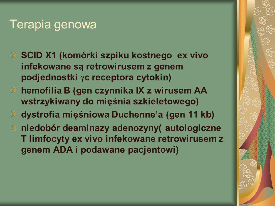Terapia genowa SCID X1 (komórki szpiku kostnego ex vivo infekowane są retrowirusem z genem podjednostki  c receptora cytokin) hemofilia B (gen czynnika IX z wirusem AA wstrzykiwany do mięśnia szkieletowego) dystrofia mięśniowa Duchenne'a (gen 11 kb) niedobór deaminazy adenozyny( autologiczne T limfocyty ex vivo infekowane retrowirusem z genem ADA i podawane pacjentowi)