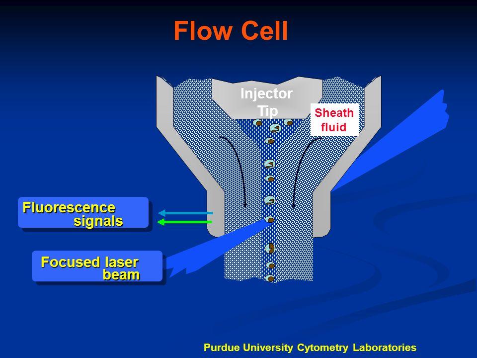 Forward Angle Light Scatter FALS Sensor Laser Purdue University Cytometry Laboratories