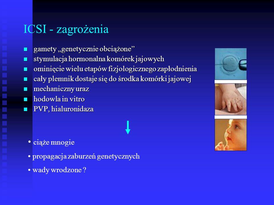 """ICSI - zagrożenia gamety """"genetycznie obciążone"""" gamety """"genetycznie obciążone"""" stymulacja hormonalna komórek jajowych stymulacja hormonalna komórek j"""