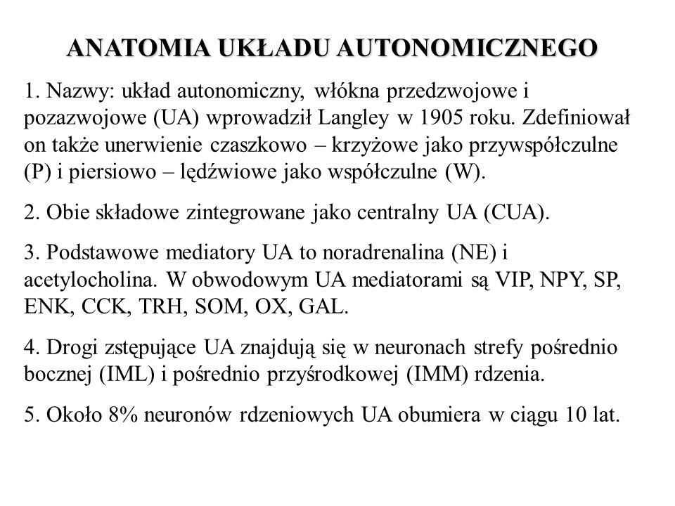 ANATOMIA UKŁADU AUTONOMICZNEGO 1. Nazwy: układ autonomiczny, włókna przedzwojowe i pozazwojowe (UA) wprowadził Langley w 1905 roku. Zdefiniował on tak