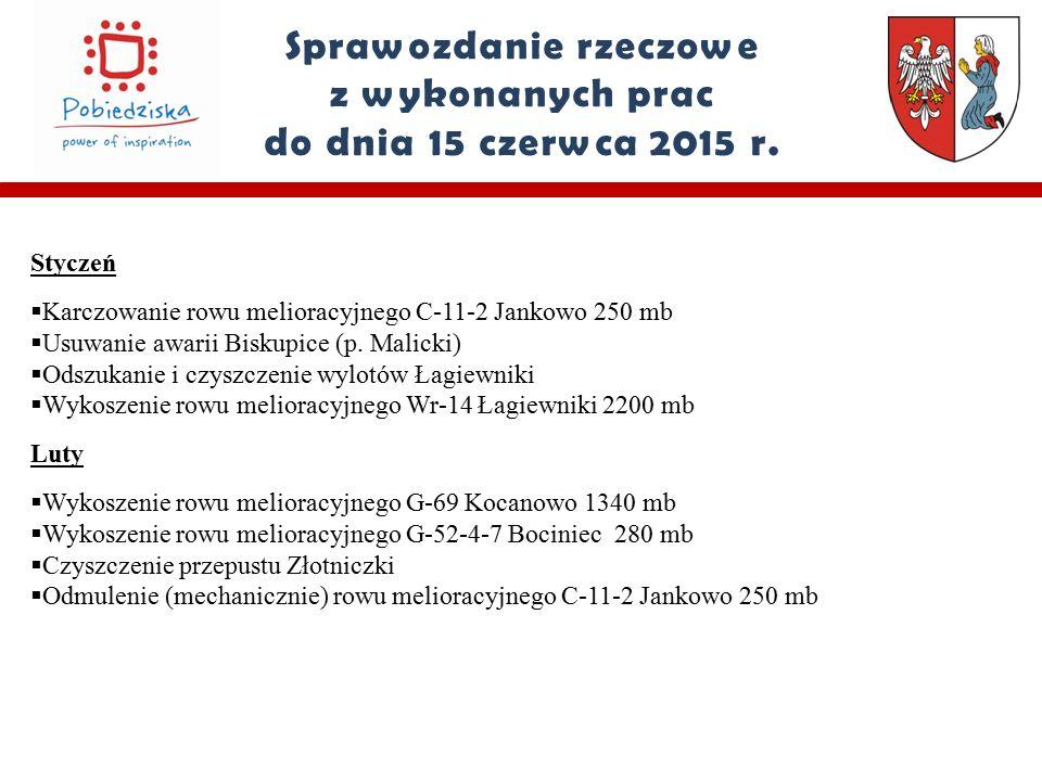 Sprawozdanie rzeczowe z wykonanych prac do dnia 15 czerwca 2015 r.