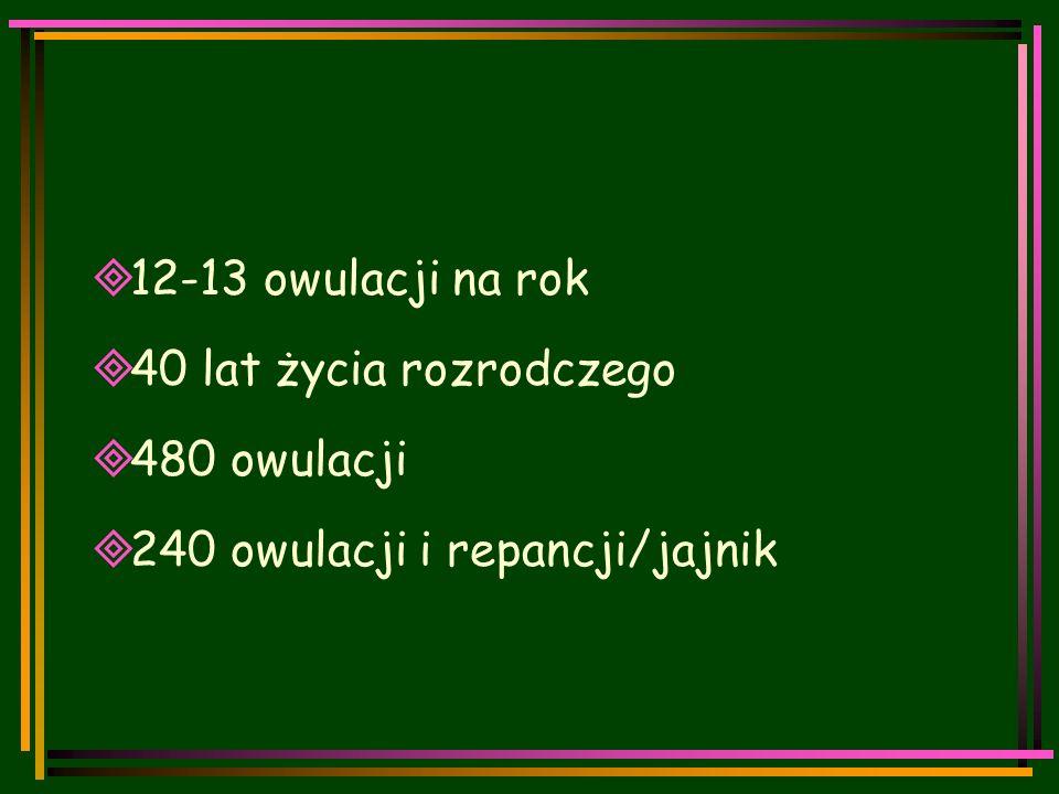  12-13 owulacji na rok  40 lat życia rozrodczego  480 owulacji  240 owulacji i repancji/jajnik