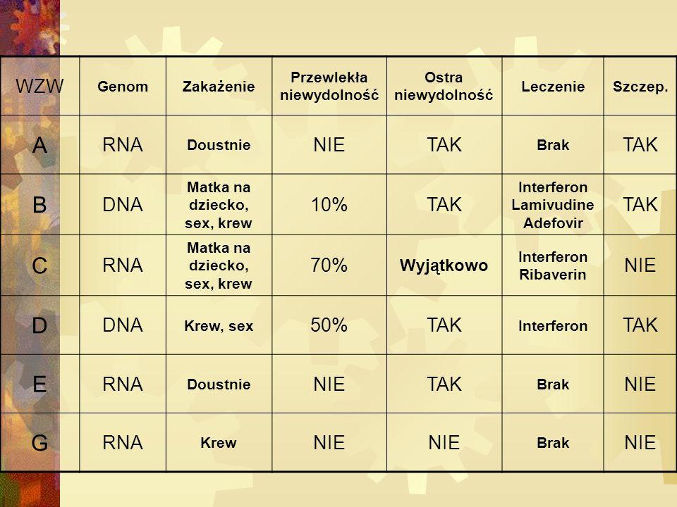 WZW GenomZakażenie Przewlekła niewydolność Ostra niewydolność LeczenieSzczep.