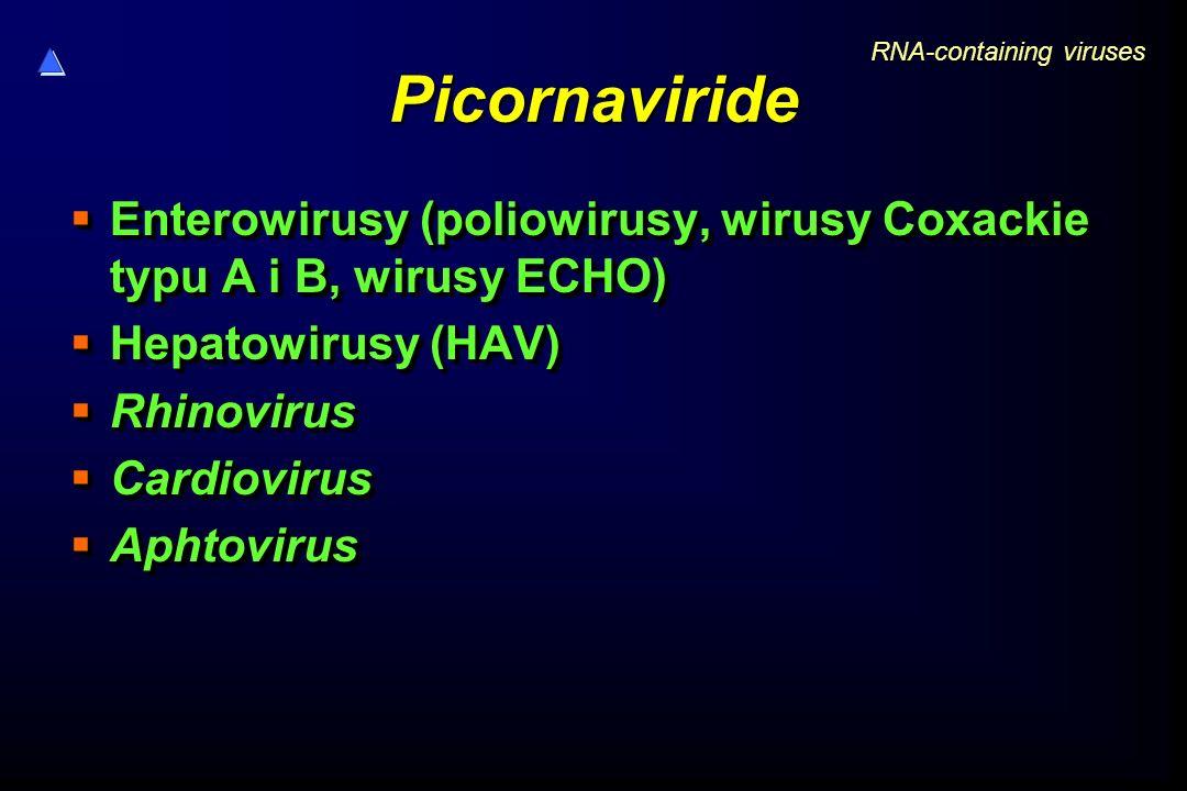 Picornaviride  Enterowirusy (poliowirusy, wirusy Coxackie typu A i B, wirusy ECHO)  Hepatowirusy (HAV)  Rhinovirus  Cardiovirus  Aphtovirus  Ent
